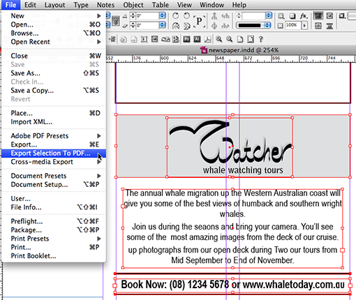 Selection to PDF - New InDesign Add-on - Cari Jansen