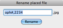 Rename placed file dialog with current image name editable.