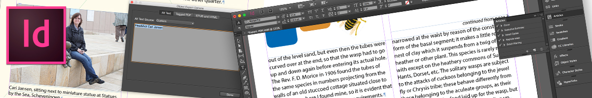 Adobe InDesign screenshots
